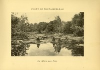 Two men sitting near a lake in the Fontainebleau place forest