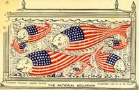 National Aquarium, Patriotic Fantasy