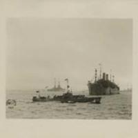 A Flotilla of Ships