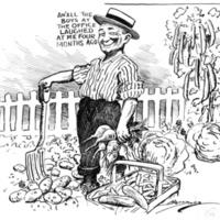 Political Harvest