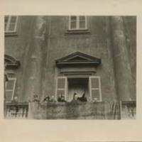 Woodrow Wilson and Edith Bolling Wilson on a Balcony